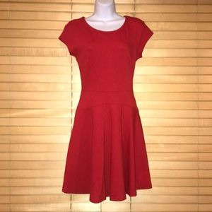 Diane Von Furstenberg Red Skater Dress